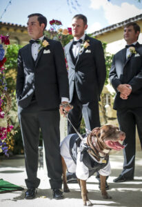 Your dog in your ceremony!