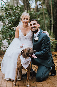 Wedding with dog